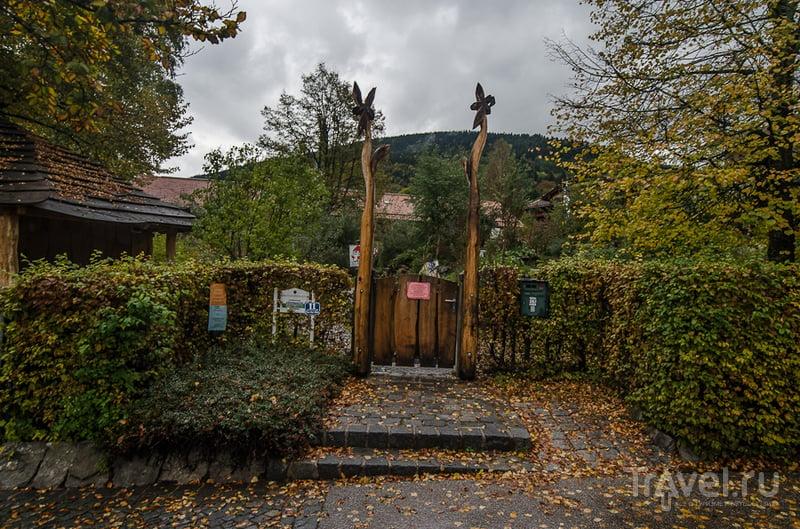 Золотая осень в Баварии. Тегернзее / Фото из Германии