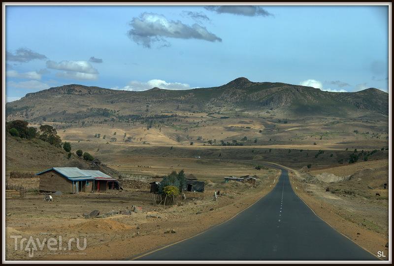 В Эфиопии / Фото из Эфиопии