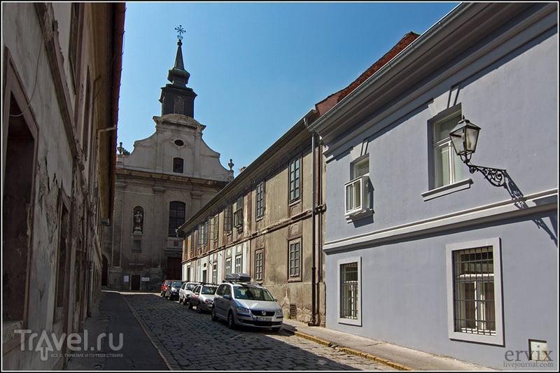 Городки на Дунае: Петроварадин и Чортановцы / Фото из Сербии