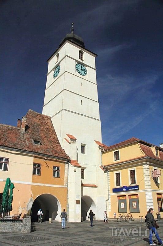 Башня советов в Сибиу, Румыния / Фото из Румынии