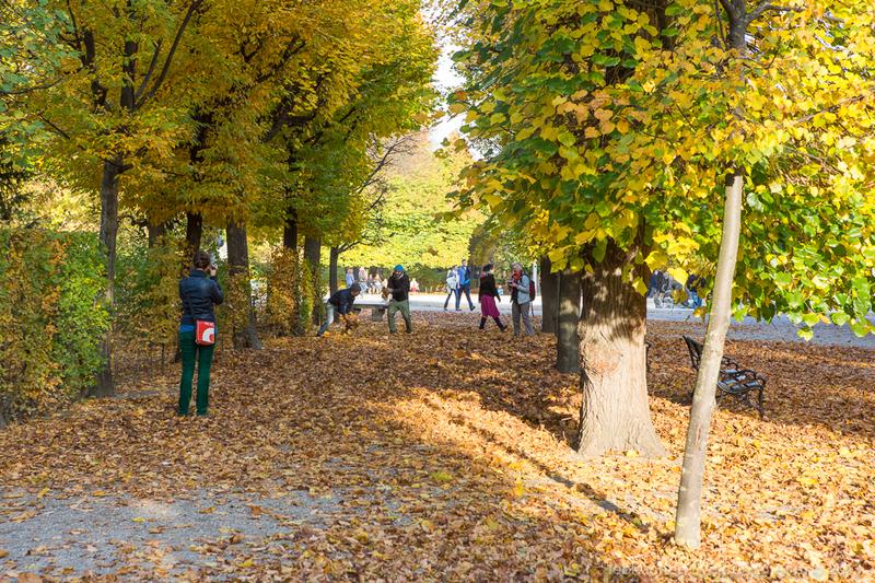 Осенний парк Шёнбрунн / Фото из Австрии