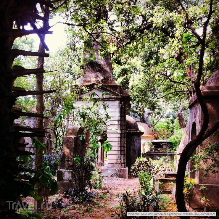 Это кладбище South park / Индия