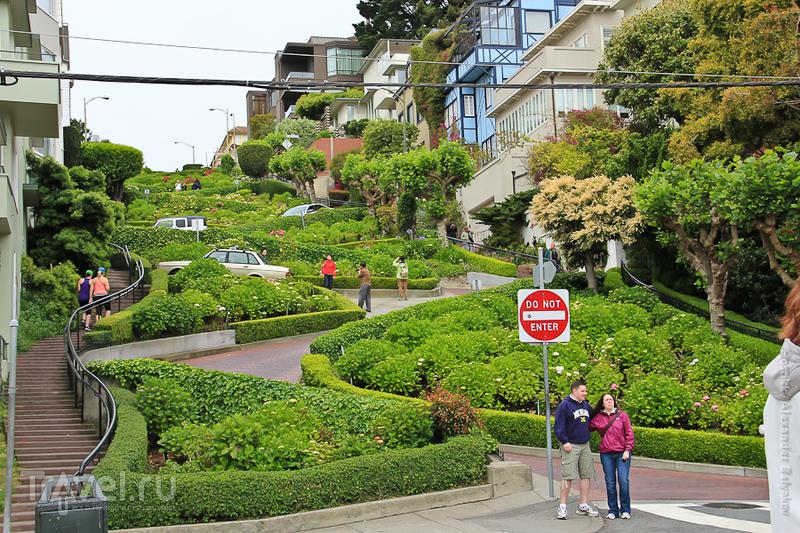 Калифорния. Сан-Франциско / Фото из США