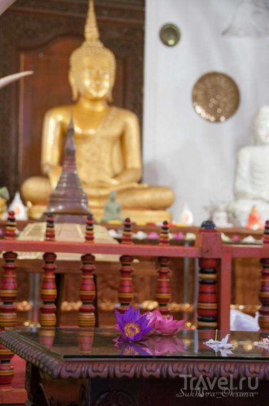В храме Зуба Будды в Канди, Шри-Ланка / Фото со Шри-Ланки