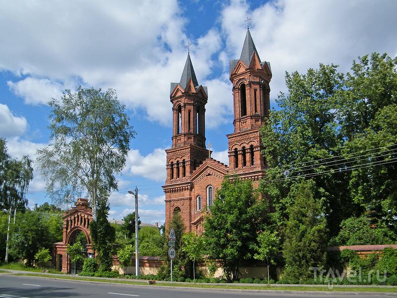Костел Святой Варвары в Витебске, Белоруссия / Фото из Белоруссии