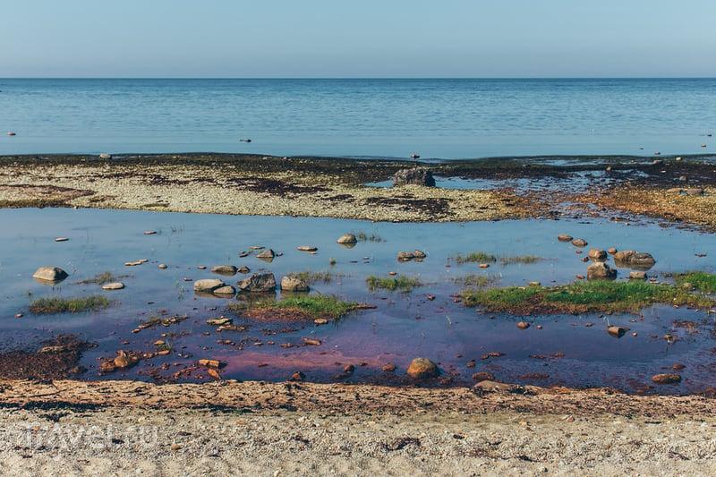 Осмуссаар: остров, где похоронен Один / Фото из Эстонии