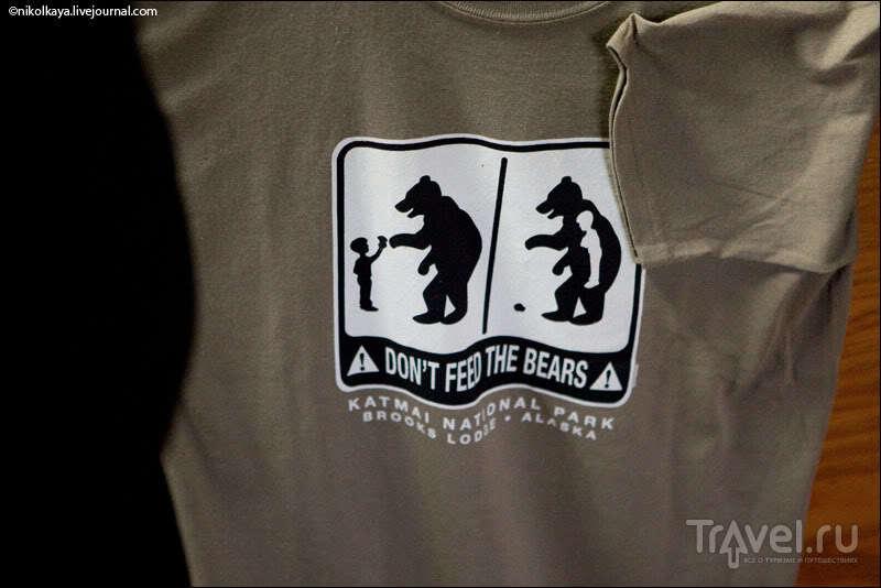Катмай: медвежье царство на Аляске / Фото из США