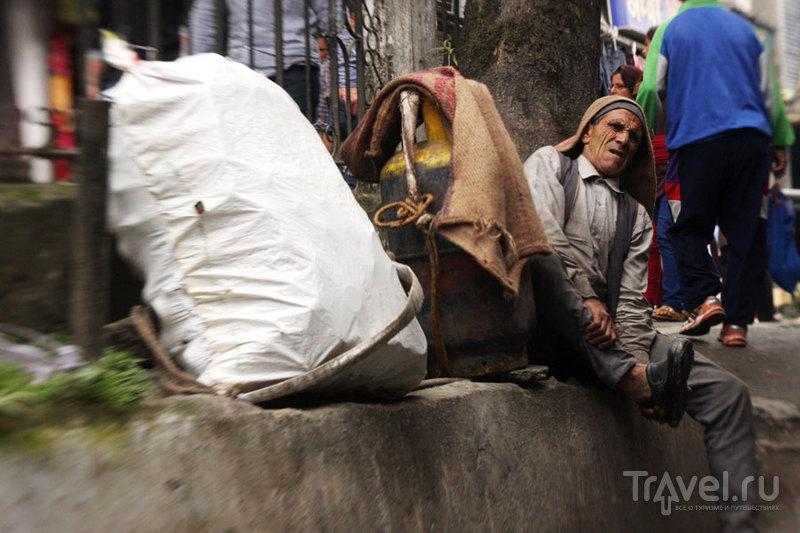 Носильщик из Дарджилинга / Фото из Индии