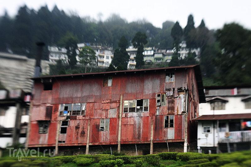 Та самая чайная фабрика, вид со стороны плантации. Главный фасад выглядит немного более презентабельно / Индия