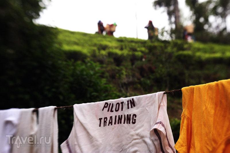 Pilot in training / Индия
