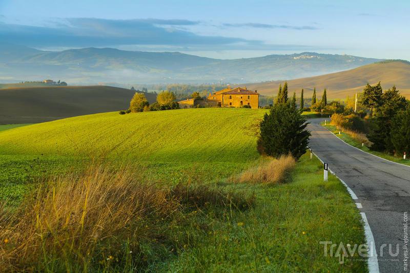 В Тоскану на ноябрьские праздники / Фото из Италии