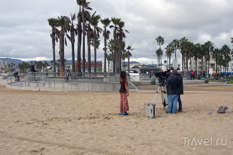 Лос-Анджелес: автобус, пальмы, океан / США