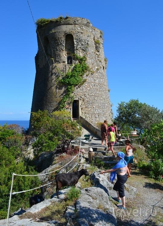Башня в Праяно на Амальфитанском побережье, Италия / Фото из Италии