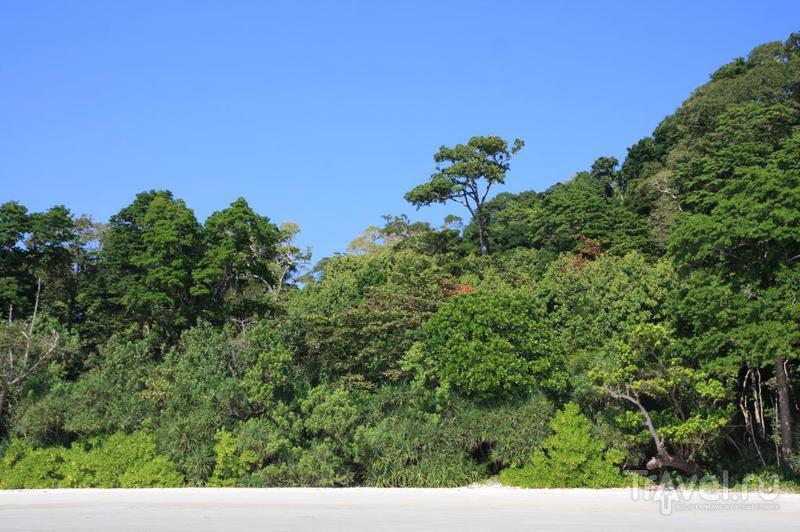 Андаманские острова. Остров Хэвлок, западная сторона / Индия