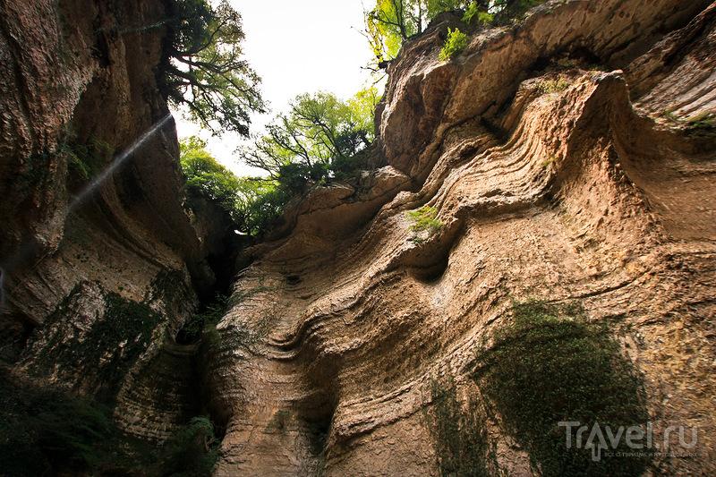 Шакуранские водопады, путешествие в сказочный лес / Фото из Абхазии