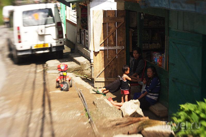 Пеллинг. Охота на Канченджангу / Фото из Индии