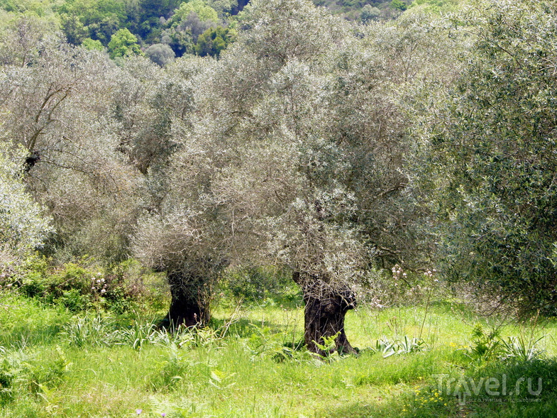 Автопробег по Криту. Южный берег / Греция