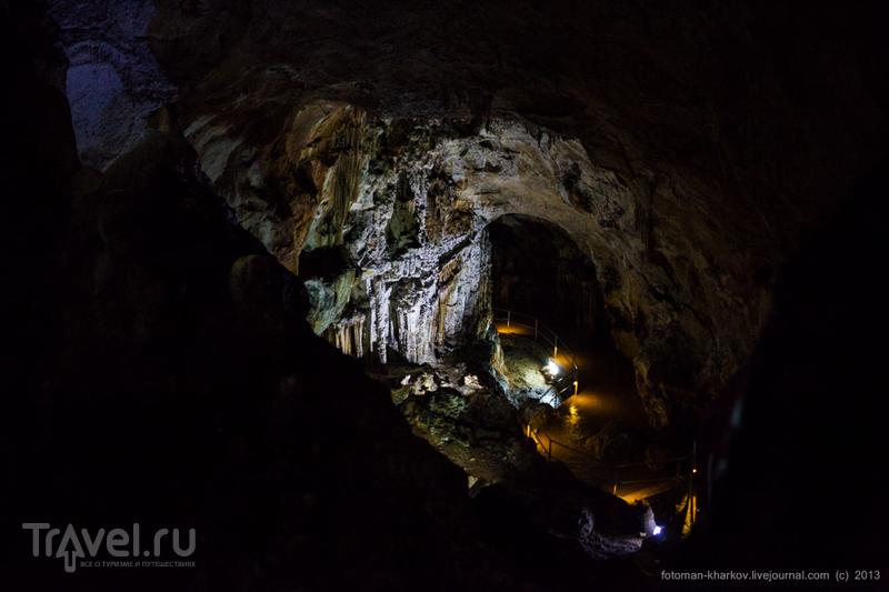 Мамонтова пещера (Эмене-Баир-Хосар). Классические виды / Украина