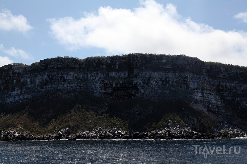Арка Дарвина. Остров Дарвин / Эквадор