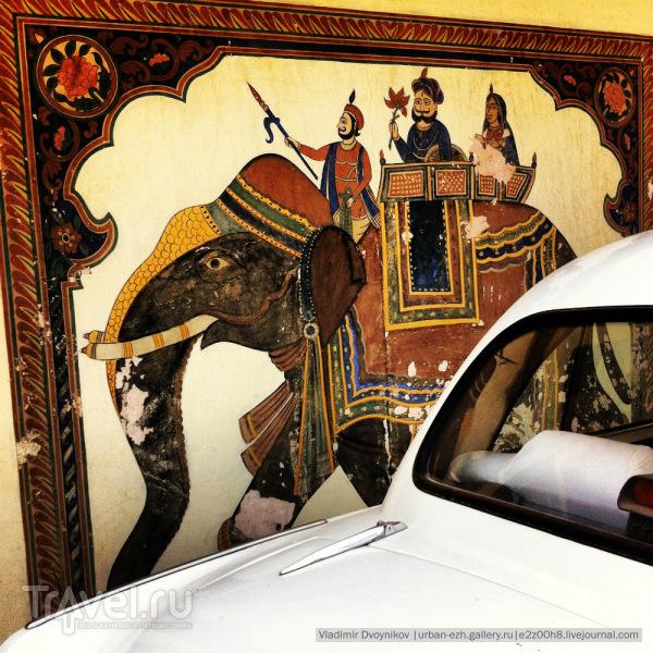 Дорога в Раджастан. Вполне медвежабельно / Индия