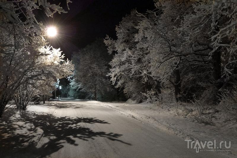 Улица Tammiku в Раквере, Эстония / Фото из Эстонии