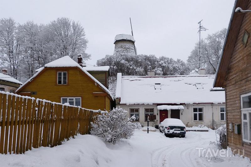 Ветряная мельница Валлимяэ (Vallimäe tuuleveski) в Раквере, Эстония / Фото из Эстонии