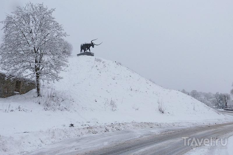 Раквере / Фото из Эстонии