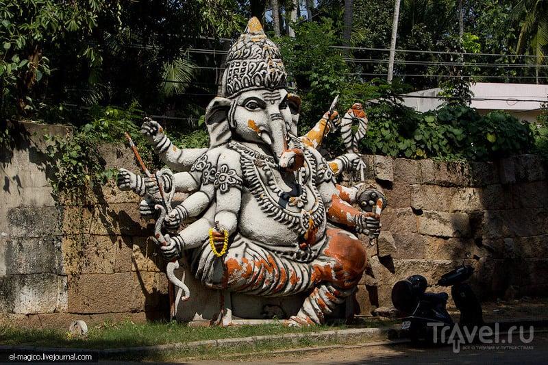 В Керале, Индия / Фото из Индии
