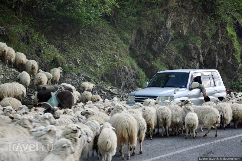 Военно-грузинская дорога / Фото из Грузии