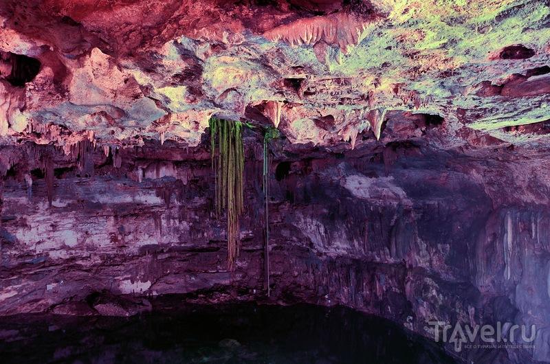 Золотистой текилы струя... Мексика 2013 / Фото из Мексики