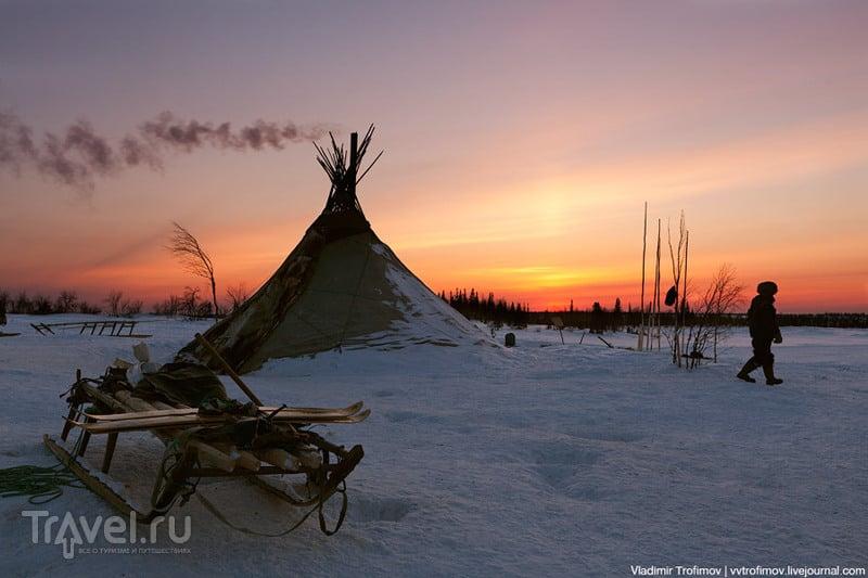 В Ямало-Ненецком автономном округе, Россия / Фото из России