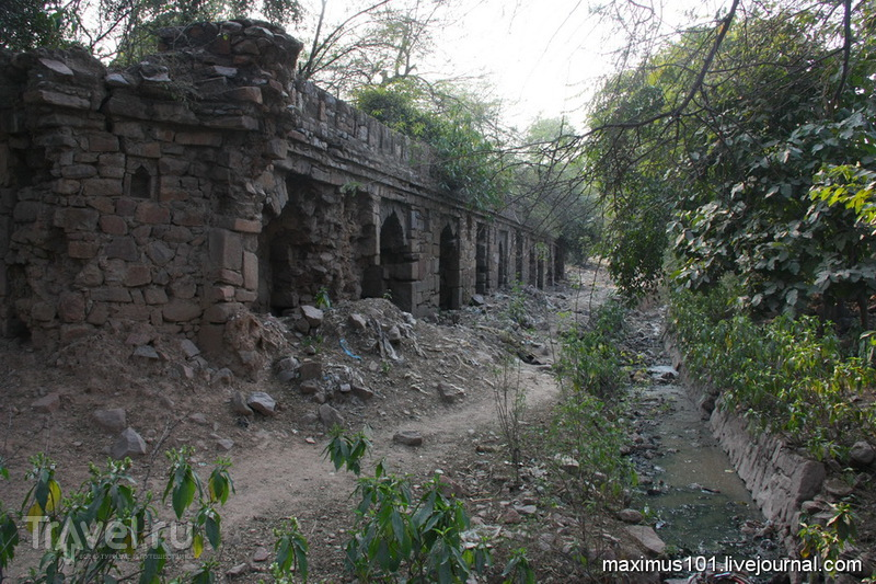 Мехраули - мечети в джунглях / Индия