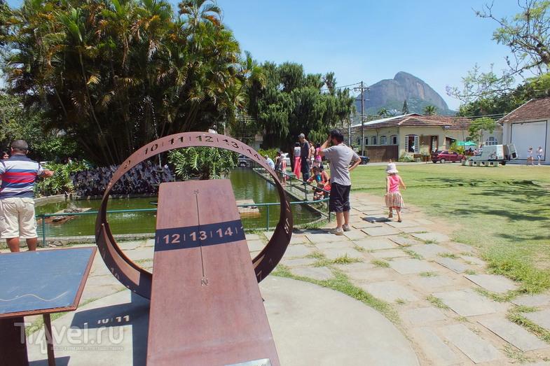 Рио-де-Жанейро. Ботанический сад / Бразилия