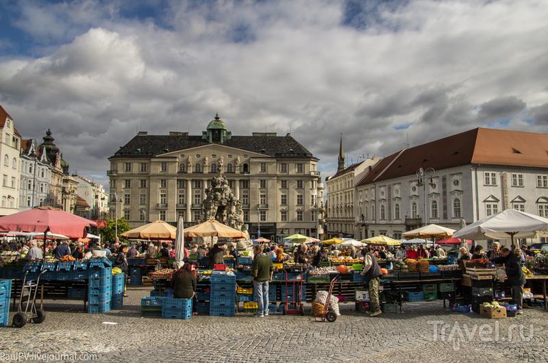Рыночная площадь в Брно, Чехия / Фото из Чехии