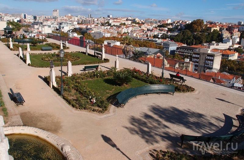 Смотровая мирадору де Сан Педру де Алкантара в Лиссабоне, Португалия / Фото из Португалии