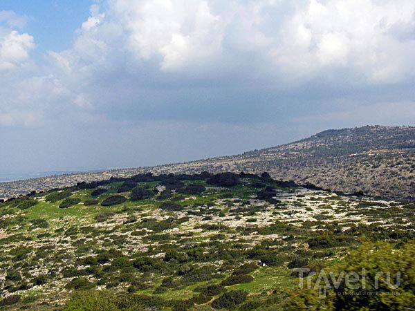 Святая Земля - Израиль. Галилея / Израиль