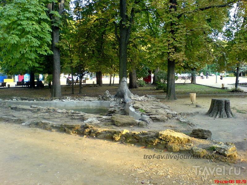 Морж в парке им. Горького в Таганроге, Россия / Фото из России