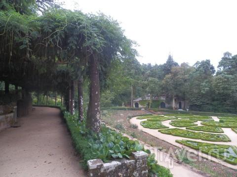 Цветник и пергола у Дворца Букасо / Португалия