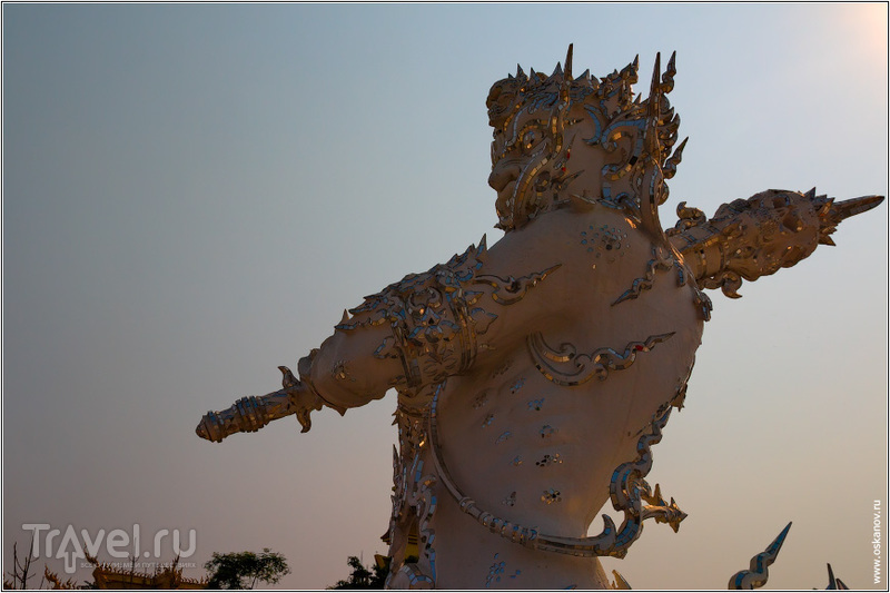 Ты платил членские взносы в общество охраны природы? / Фото из Таиланда