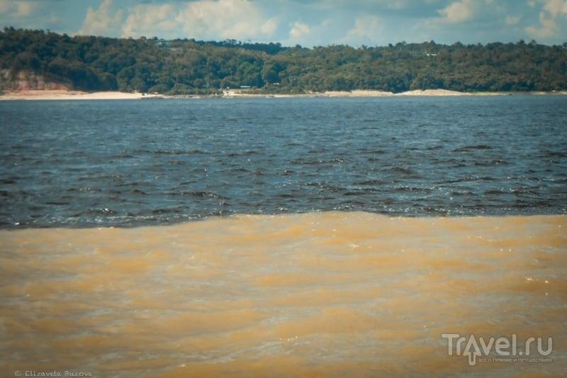 """Манаус или """"На далекой Амазонке не бывал я никогда"""" / Бразилия"""