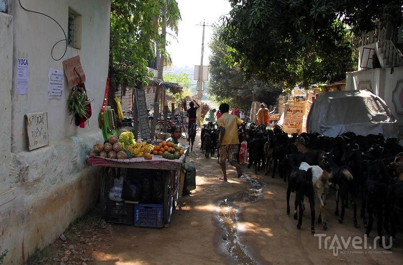 Знакомство с Хампи / Индия