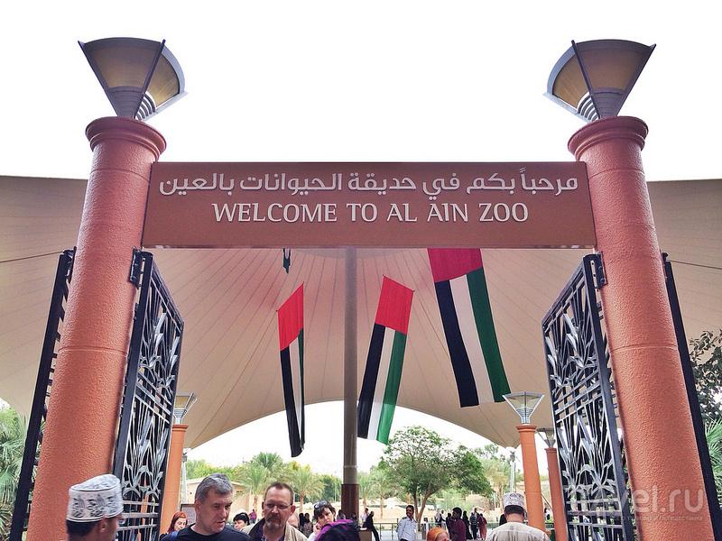 Поездка в зоопарк в городе Аль-Айн и поднятие на гору Джебел-Хафит / ОАЭ