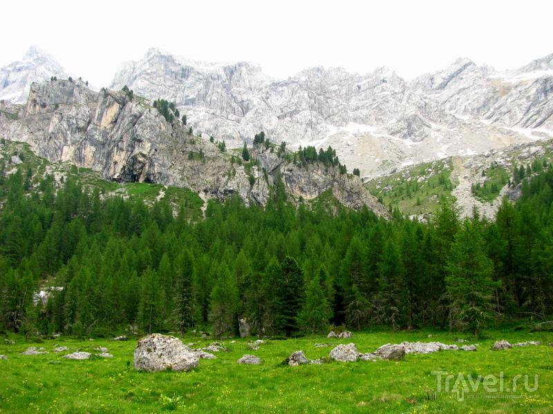 Валь-ди-Фасса летом / Италия