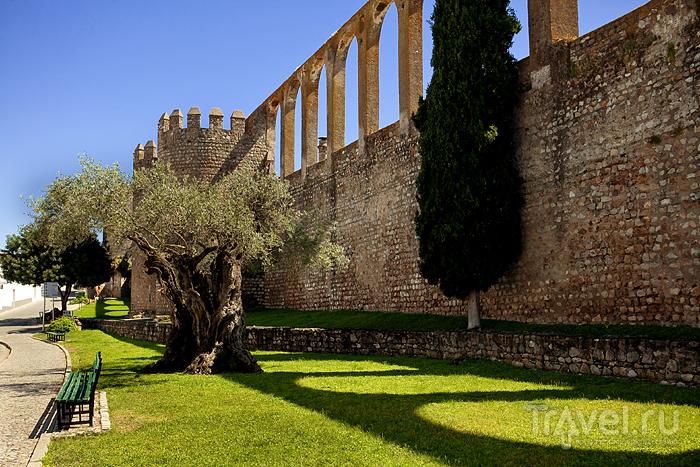 Serpa - castelo bonita! / Португалия
