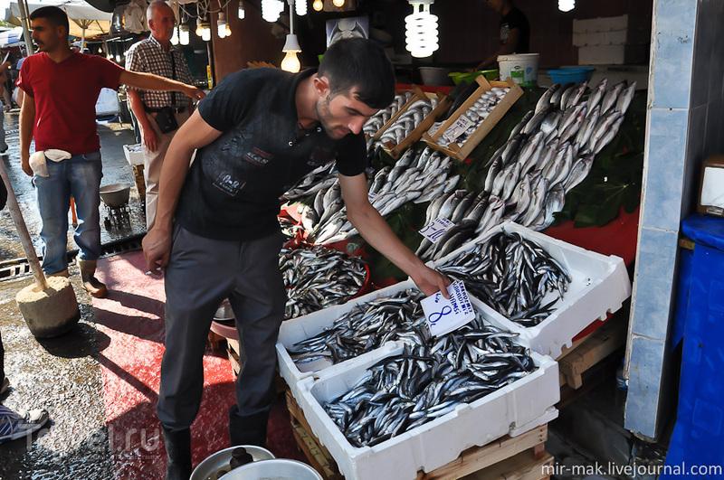 Рыбный рынок Каракёй, Стамбул плюс один секрет / Турция