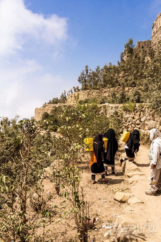 Йемен. Джабаль Бура'а: с гор в тропический лес / Фото из Йемена