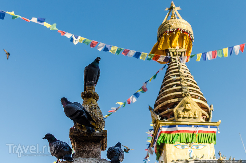 Непал. Катманду в деталях / Непал