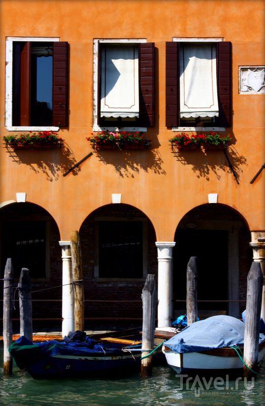 Страх и ненависть в Венеции / Фото из Италии