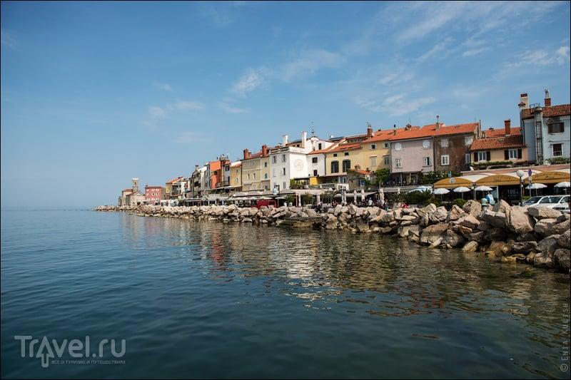 В городе Пиран, Словения / Фото из Словении
