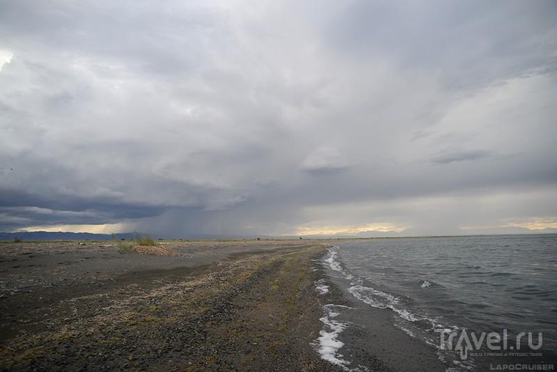 Монголия. Лебединое озеро / Монголия